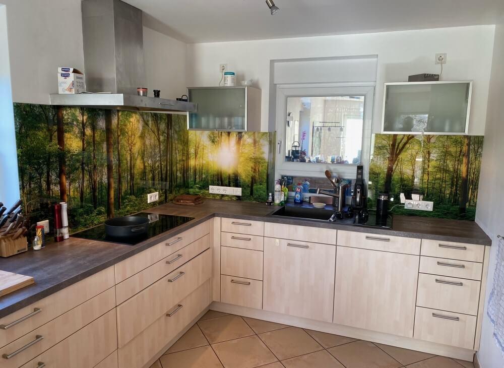Küchenrückwand aus Glas Motiv Wald
